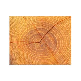 Copie en coupe de toile d'arbre d'acacia