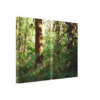 Copie enchantée de toile d'étendue de forêt