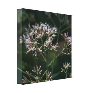 Copie florale de toile de fleur sauvage pourpre de