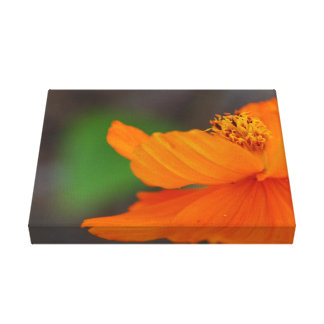 Copie florale orange de toile