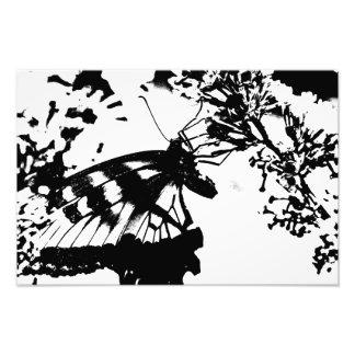 Copie noire et blanche abstraite de papillon photos d'art