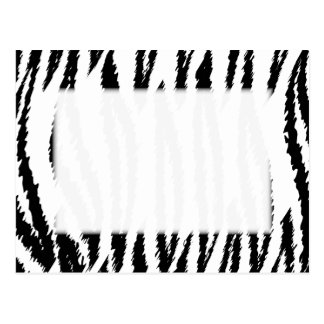Copie noire et blanche de tigre. Modèle de tigre Carte Postale