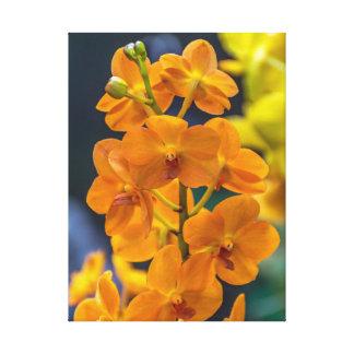Copie orange de toile d'orchidées