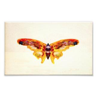Copie pourpre et jaune vintage de photo de papillo