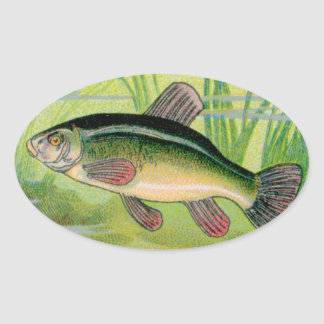Copie vintage de poissons de tanches sticker ovale