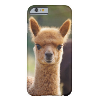 COQUE BARELY THERE iPhone 6