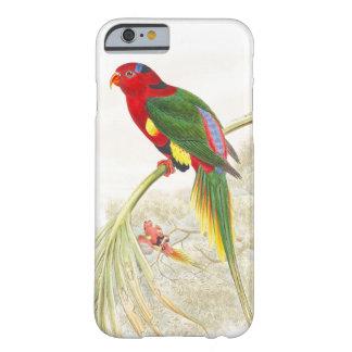 Coque Barely There iPhone 6 Animaux de faune d'oiseaux de perroquet de