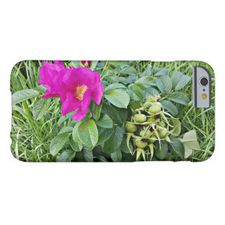 Coque Barely There iPhone 6 Baies de cynorrhodon  