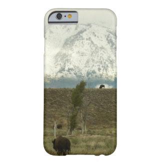 Coque Barely There iPhone 6 Bison à la photographie grande de parc national de