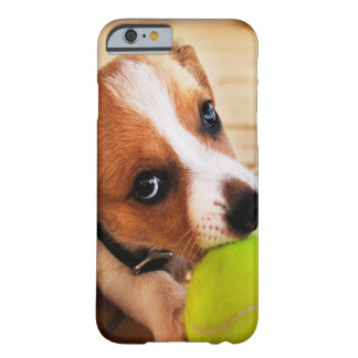 Coque Barely There iPhone 6 Chiot mignon de Jack Russell