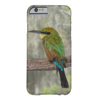 Coque Barely There iPhone 6 Oiseau d'abeille-mangeur d'arc-en-ciel, Australie