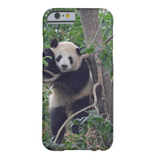 Coque Barely There iPhone 6 panda