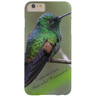 Coque Barely There iPhone 6 Plus colibri Rayure-coupé la queue