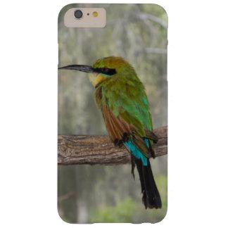 Coque Barely There iPhone 6 Plus Oiseau d'abeille-mangeur d'arc-en-ciel, Australie