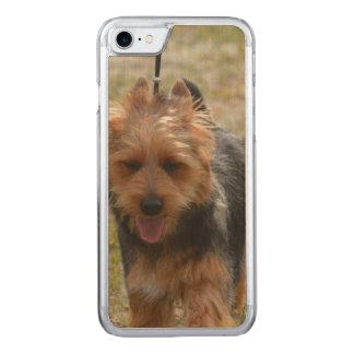 Coque Carved iPhone 8/7 Terrier australien doux