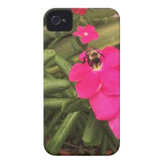 Coque Case-Mate iPhone 4 abeille