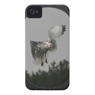 Coque Case-Mate iPhone 4 Ajoutez la grande vue ovale de photo (le noir)