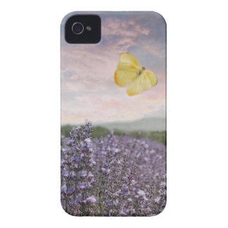 Coque Case-Mate iPhone 4 Champ des fleurs de lavande, ciel bleu, coucher du