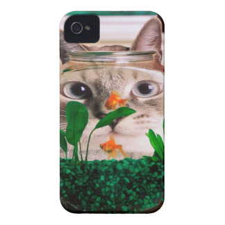 Coque Case-Mate iPhone 4 Chat et poissons - chat - chats drôles - chat fou
