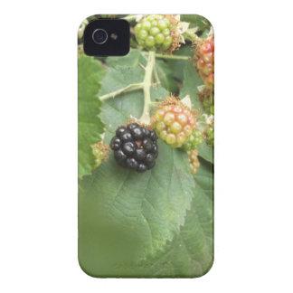 Coque Case-Mate iPhone 4 Conception noire de baie