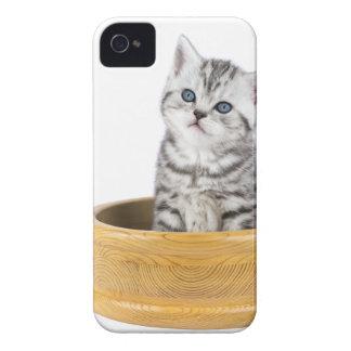 Coque Case-Mate iPhone 4 Jeune chat tigré argenté se reposant dans la