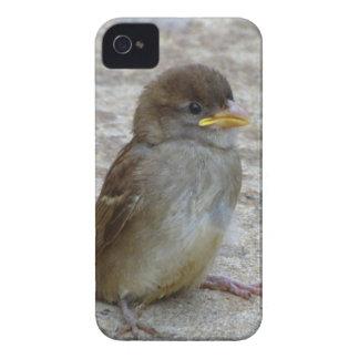 Coque Case-Mate iPhone 4 Par mes propres moyens