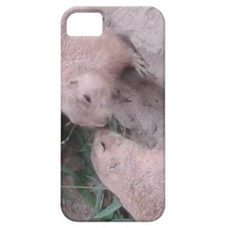 Coque Case-Mate iPhone 5 Écureuils moulus