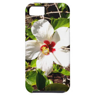 Coque Case-Mate iPhone 5 Ketmie blanche