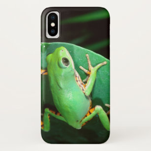 coque iphone x grenouille
