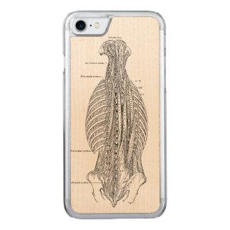 Coque En Bois iPhone 7 Anatomie vintage dessinant le dos