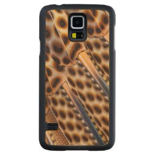 Coque En Érable Galaxy S5 Case Conception de plume de faisan d'Argus