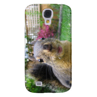 Coque Galaxy S4 Plan rapproché d'écureuil