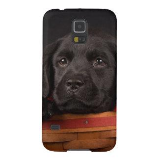 Coque Galaxy S5 Chiot noir de labrador retriever dans un panier