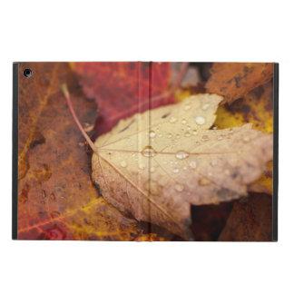 Coque iPad Air Gouttes de pluie sur la feuille d'octobre