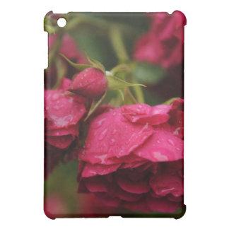 Coque ipad de roses