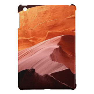 Coque iPad Mini Collection de voûte