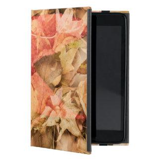 Coque iPad Mini Feuille d'automne