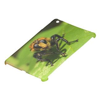 Coque iPad Mini Mouche de voleur