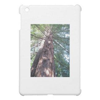 Coque iPad Mini Résultat de séquoia de Californie