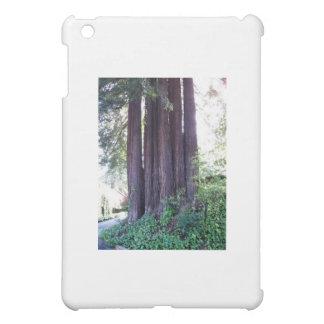 Coque iPad Mini Rouge de la Californie….bois