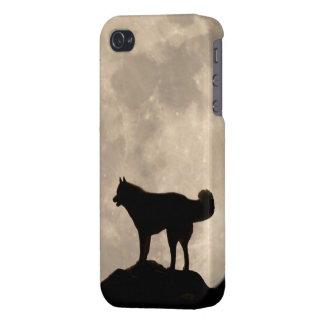 Coque iPhone 4/4S Cas enroués de chiot de Malamute de coques iphone