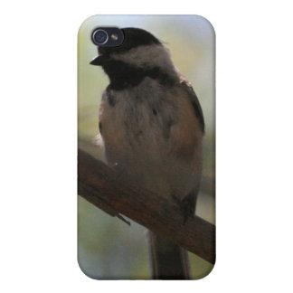 Coque iPhone 4/4S Oiseau de Lil