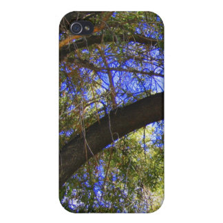 COQUE iPhone 4 BRANCHES