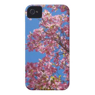 Coque iPhone 4 Case-Mate Cornouiller rose et ciel bleu