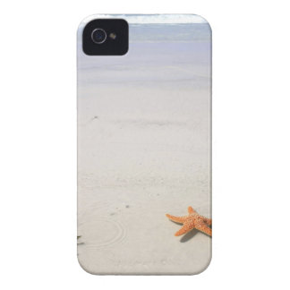 Coque iPhone 4 Case-Mate Étoiles de mer oranges sur une plage sablonneuse