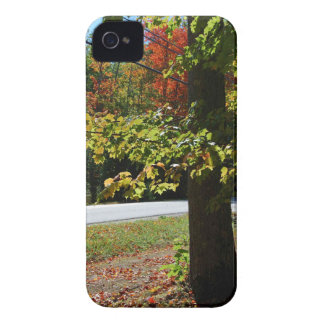 Coque iPhone 4 Case-Mate Feuille d'automne au Maine