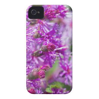 Coque iPhone 4 Case-Mate Fleurs sauvages grands d'herbe de Saint-Jacques