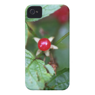 Coque iPhone 4 Case-Mate Groseille alpine (alpinum de Ribes)