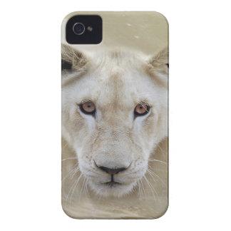 Coque iPhone 4 Case-Mate Guerrier blanc Afrique d'esprit de lion