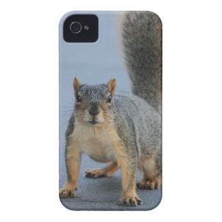 Coque iPhone 4 Case-Mate IMG_3601a.JPG
